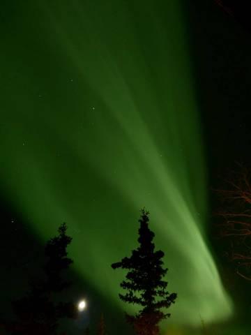 Aurora Borealis, Haines Junction - Feb 2015 - photo credit - Elsabe Kloppers