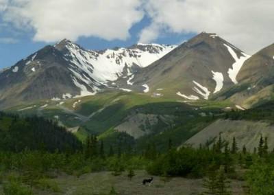 Hiking below Mount Archibald